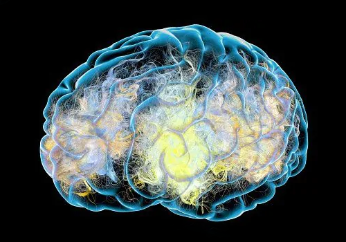 Brain Implants Used To Treat Parkinson's Can Be Hacked And Used To Control People, Scientists Warn